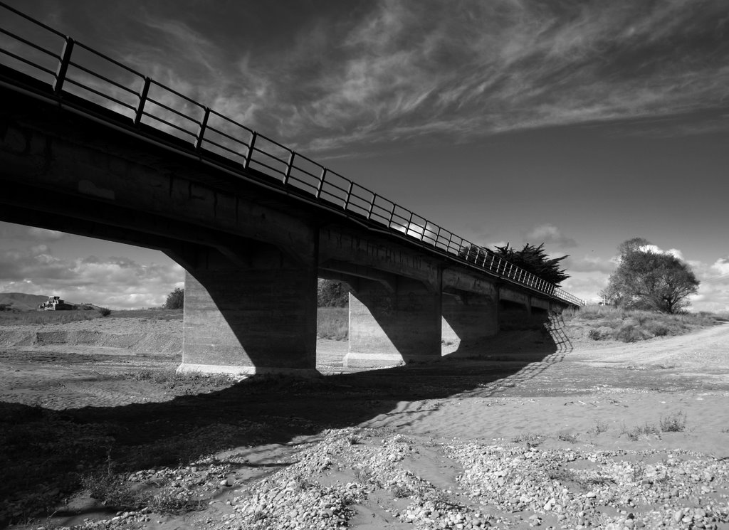 Waihenga Bridge by Tony Reid
