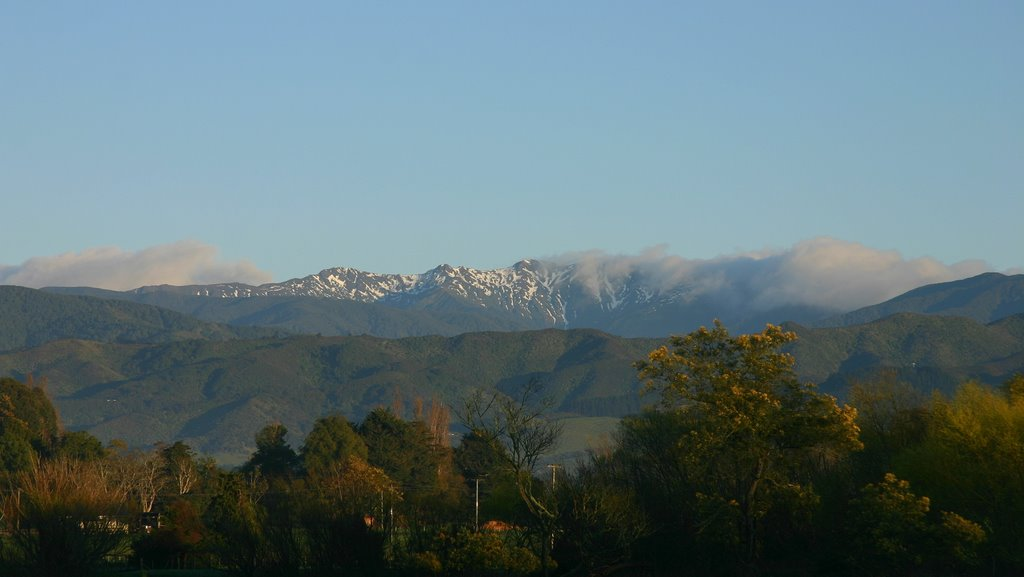 Tararuas on a Spring Morning