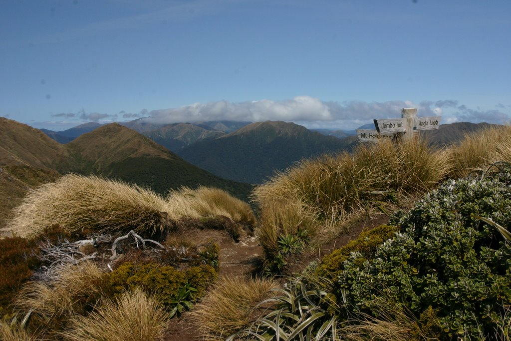 Jumbo Peak, Tararua Forest Park, New Zealand