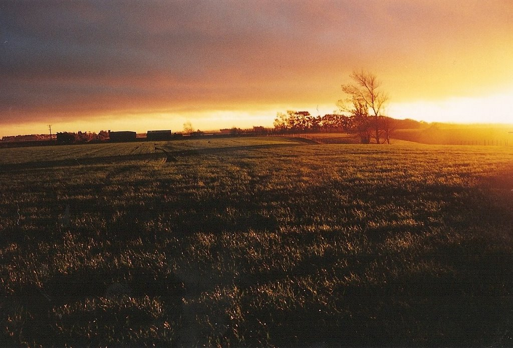 Sunset over Fairfield Road farm (Scan)