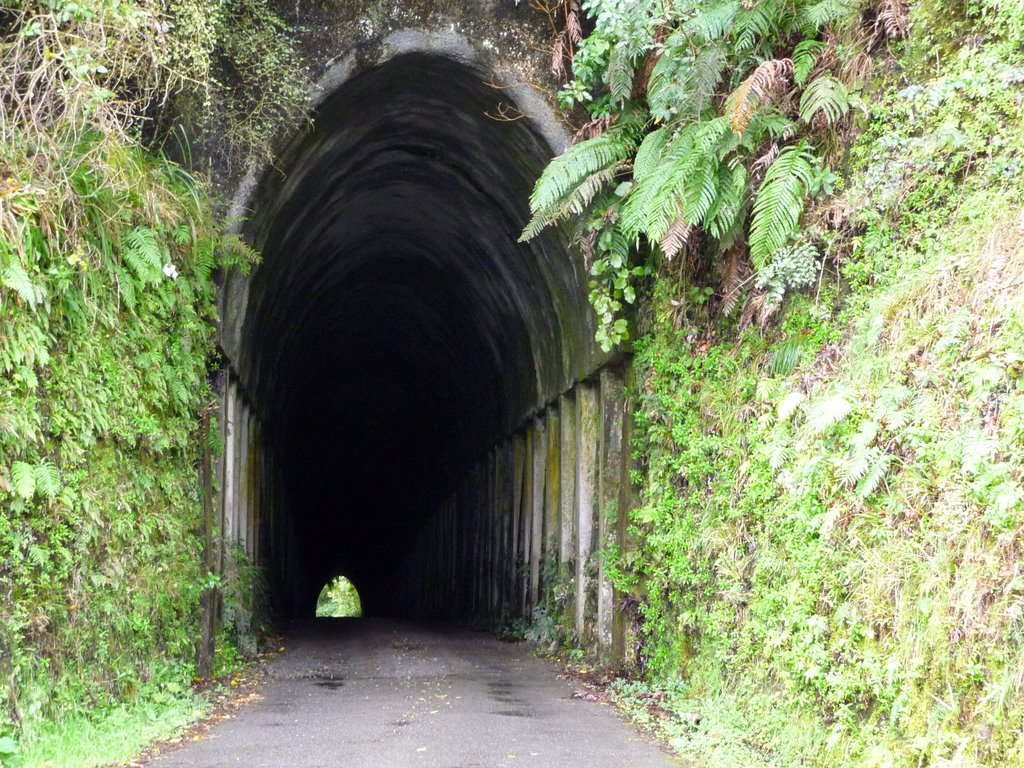 Lost World Tunnel