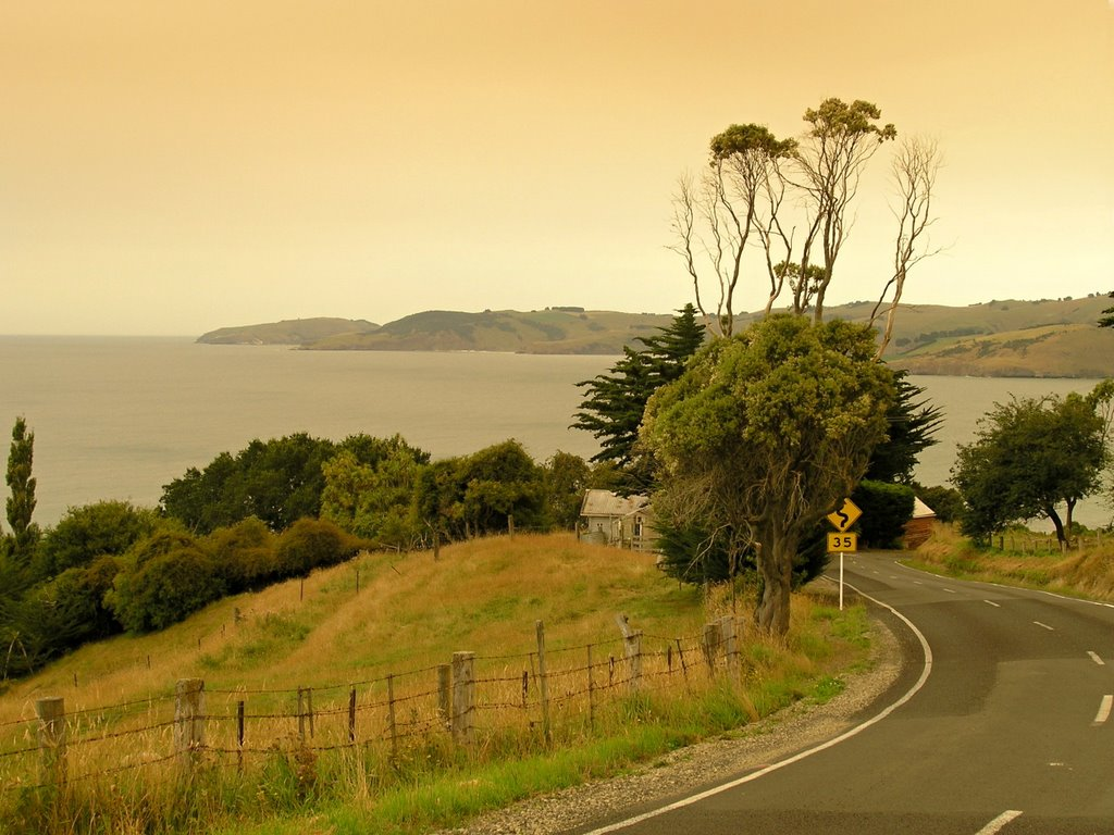 On the road from Karitane to Blueskin Bay - strange light caused by bushfires in Australia