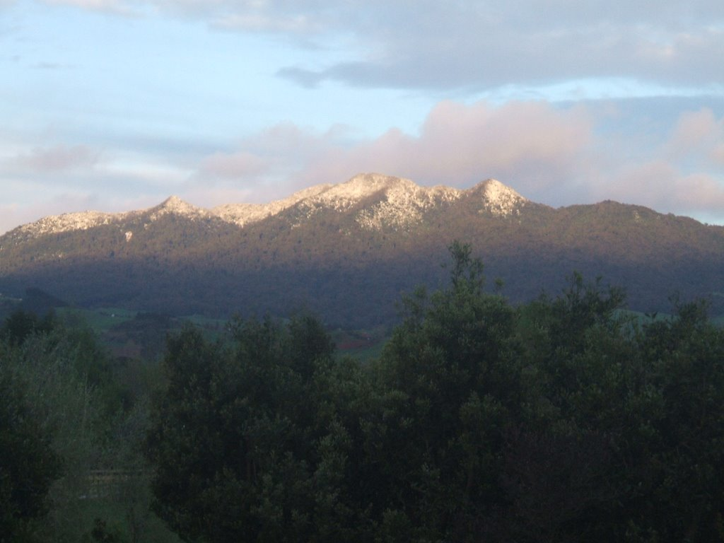Mount Pirongia snow by early morning light