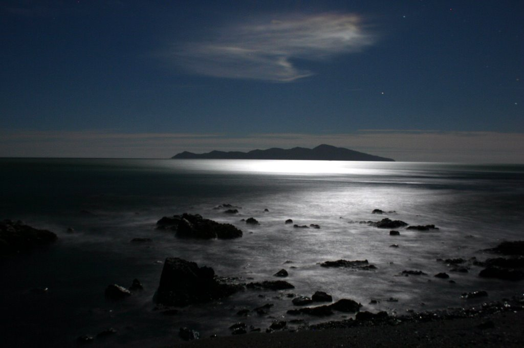 Kapiti Island in the moon-light