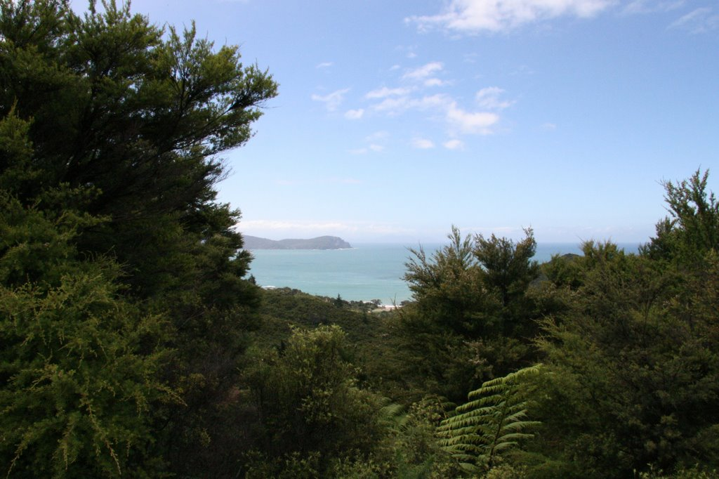 View from Coromandel Peninsula