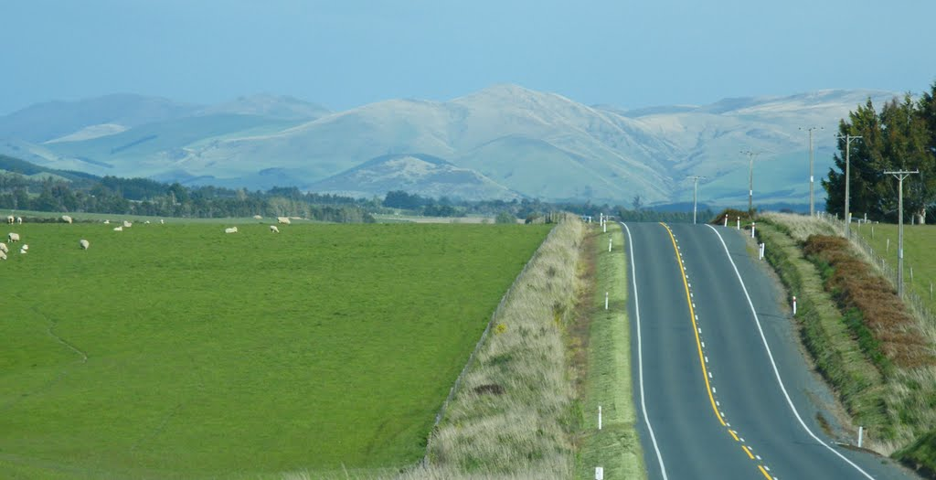 Driving South Otago
