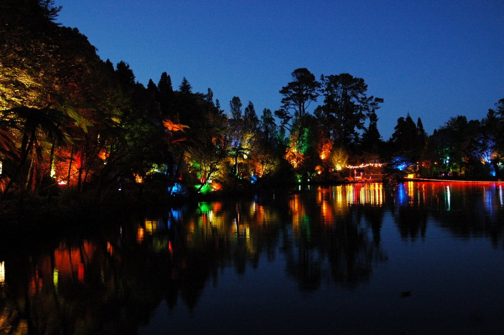 Pukekura Park by night
