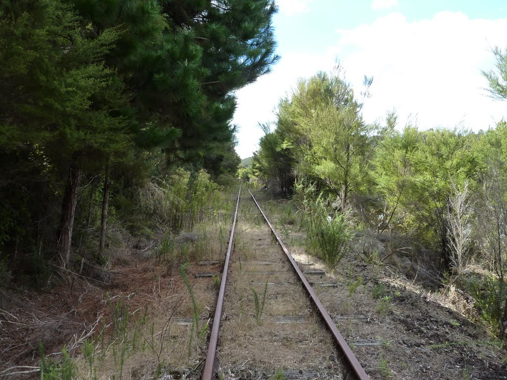 Disused Part of Bay of Islands Vintage Railway