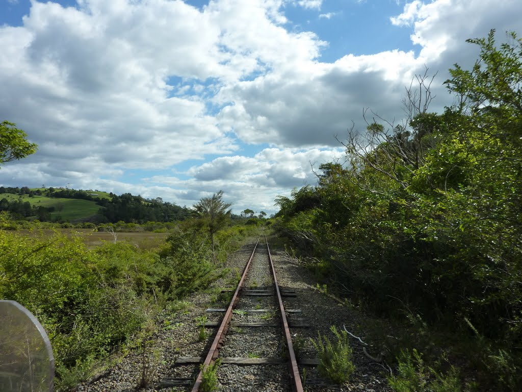 Disused Part of Bay of Islands Railway (taken from Jigger)