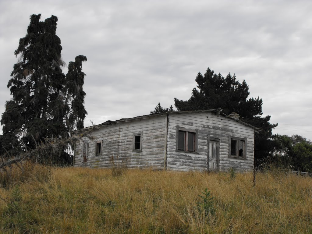 Old farm near Takaka, New Zealand