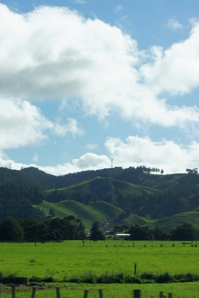 Scene from Outside Whangarei