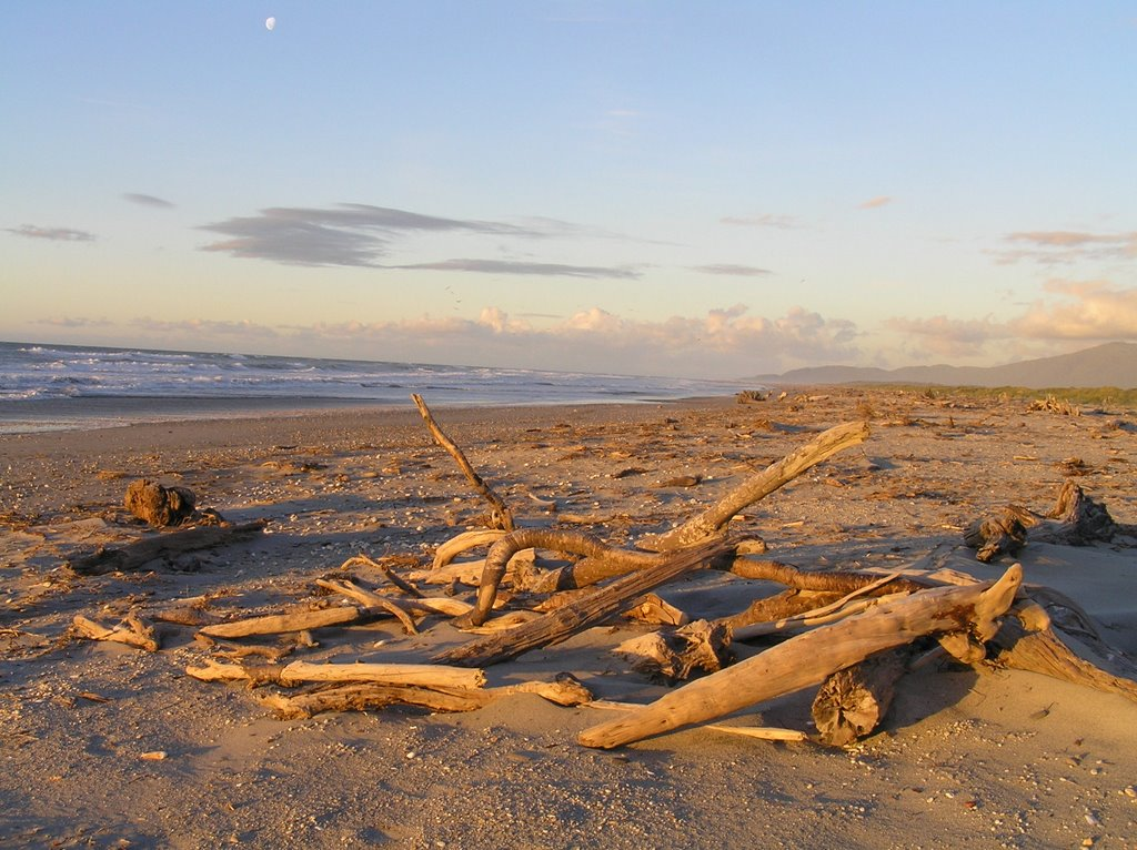 Haast Beach at sunset March 2006