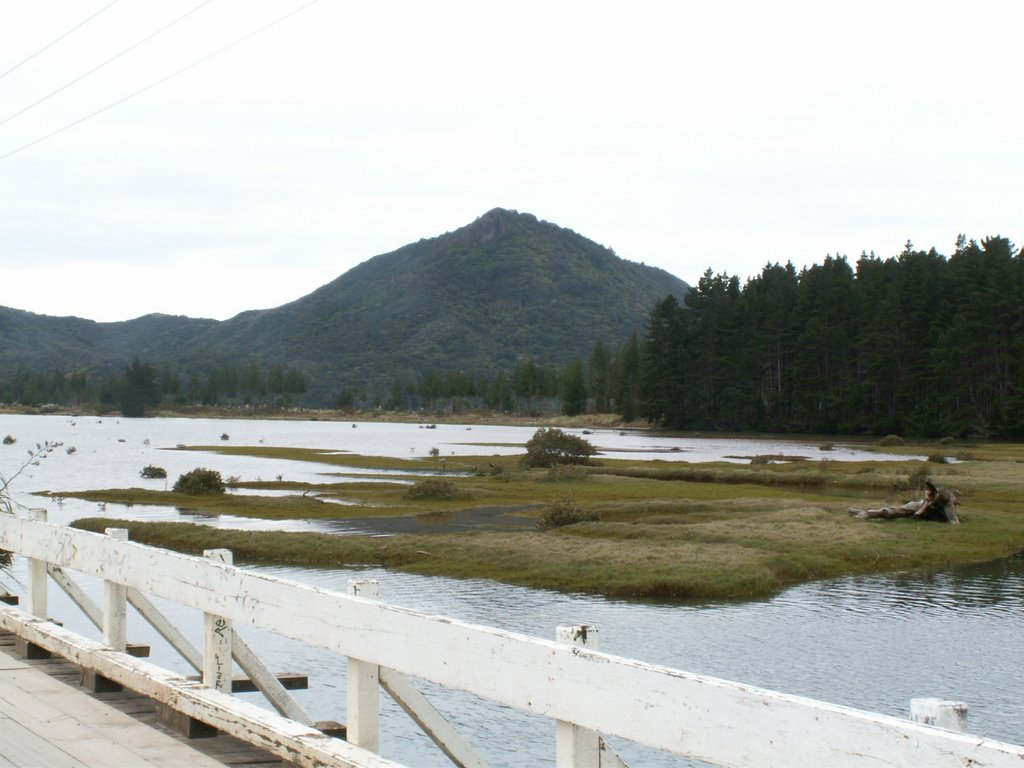 Kennedy Bay(Harataunga): Potae bridge