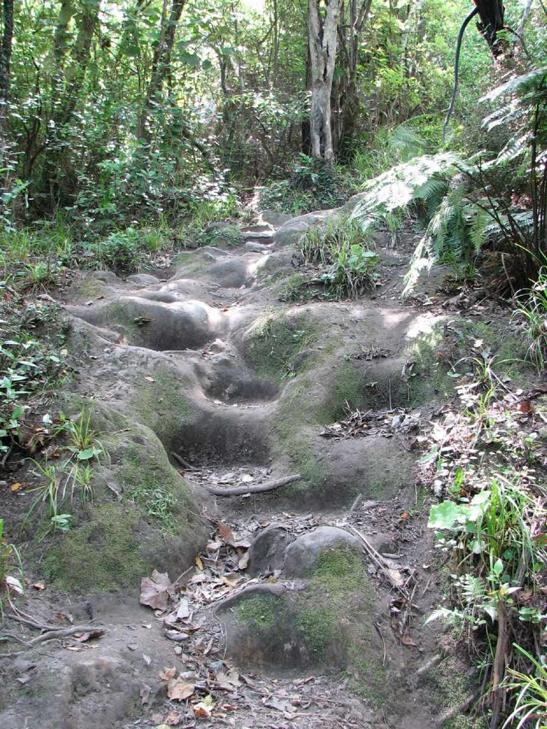 Steep rock-cut steps up to Tokatoka