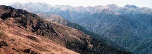 Tarn Ridge & Mitre, Tararua, New Zealand from Junction Knob