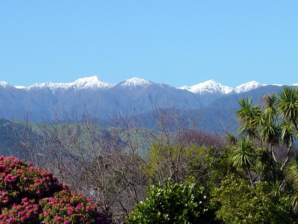 Tararua Ranges from Levin