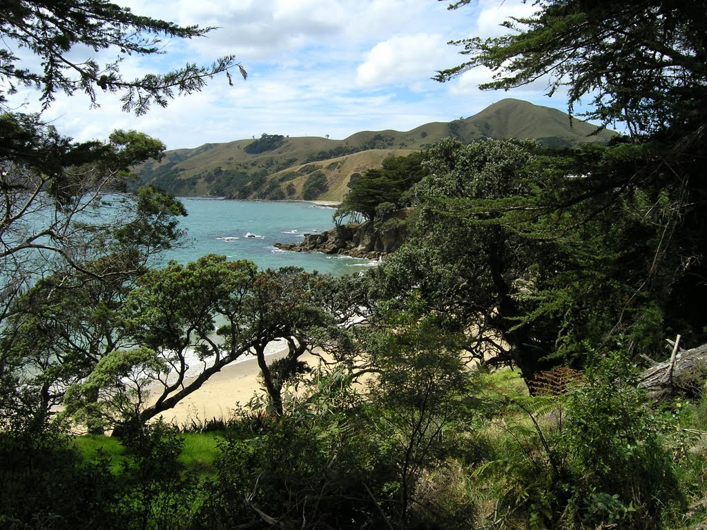 Amodeo Bay