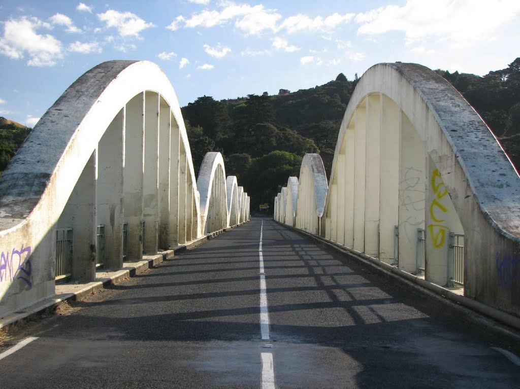 Wonderful Tuakau bridge