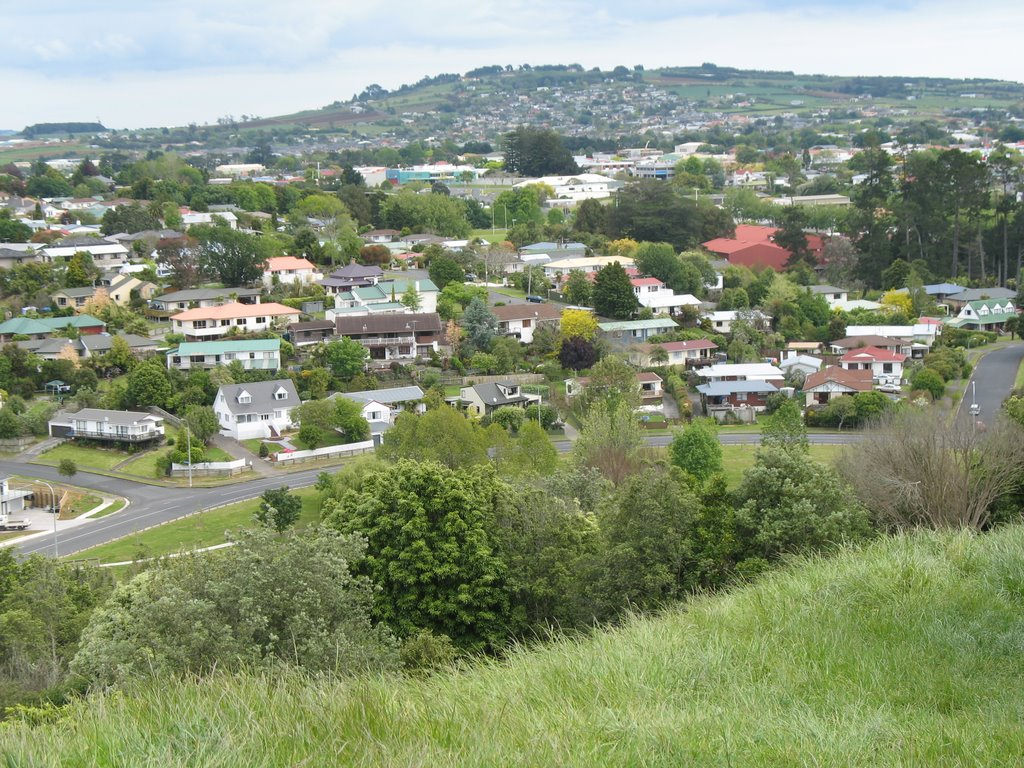 Pukekohe from Cape Hill