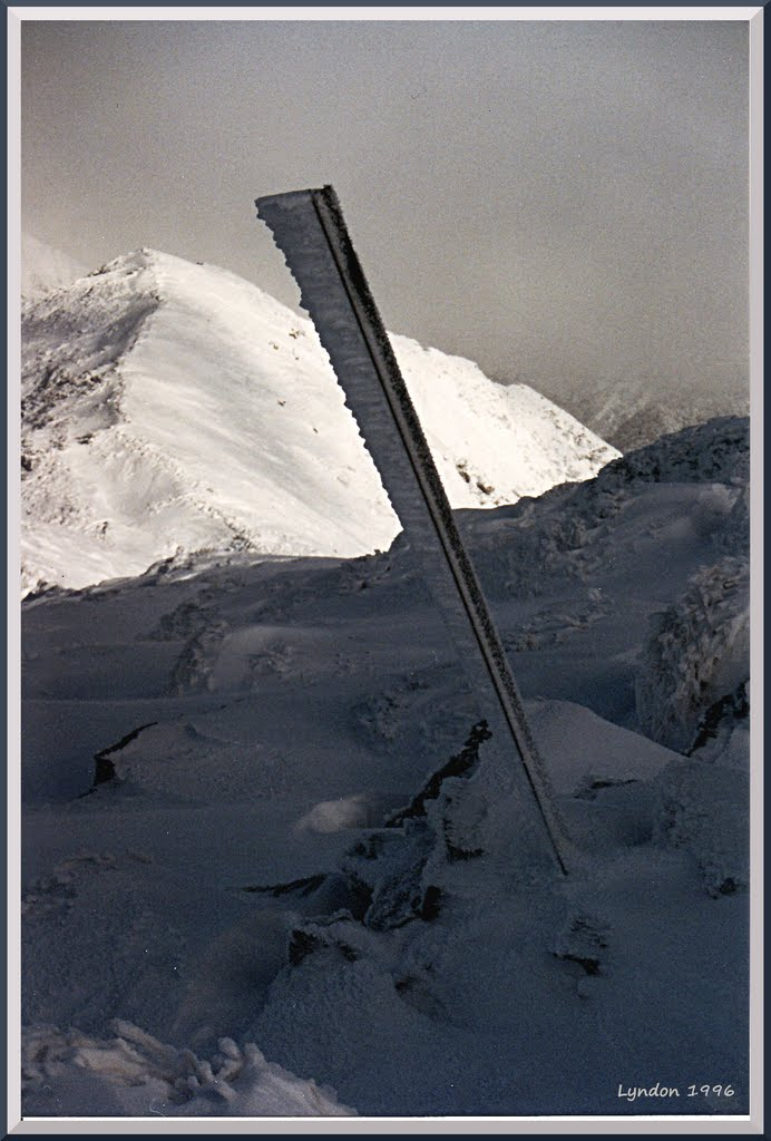 Midwinter Alpine Trail Marker