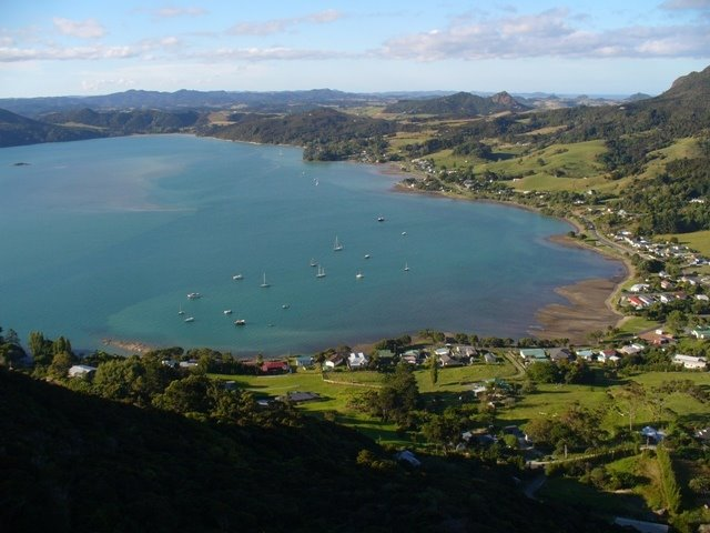 View of McLeod Bay from Mount Aubry
