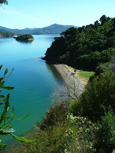 beach beside Queen Charlotte Sound