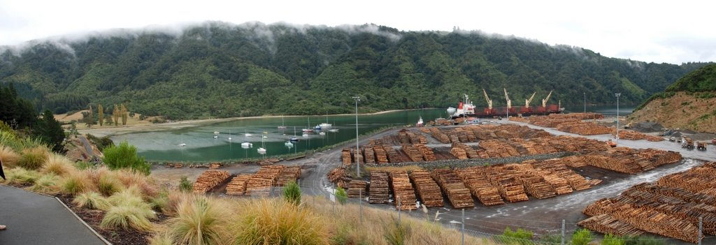 Picton Timber dock 2007