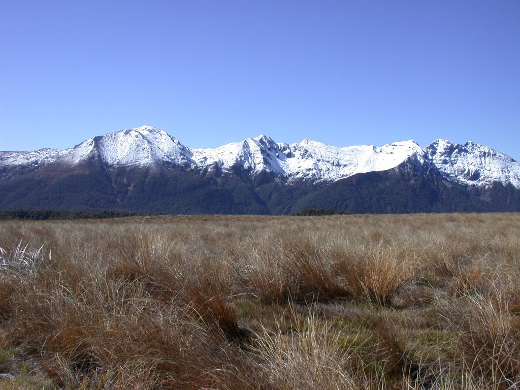 Tablelands, Kahurangi National Park, South Island, New Zealand