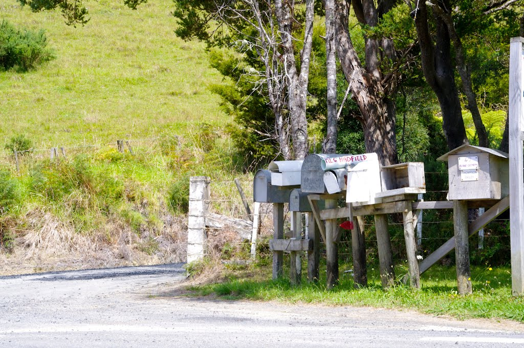 No mass produced plastic mailboxes on Rawhiti Road!