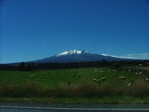 view to Mount Ruapehu from near Rangataua
