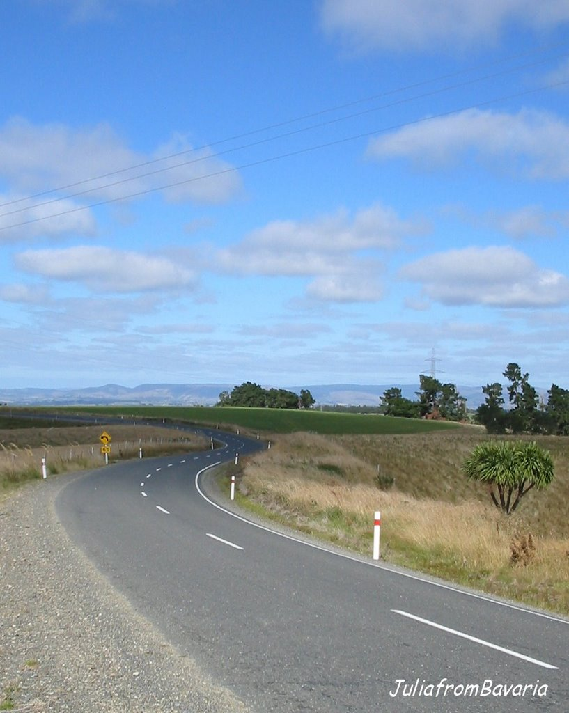 empty road in South Otago, N.Z.