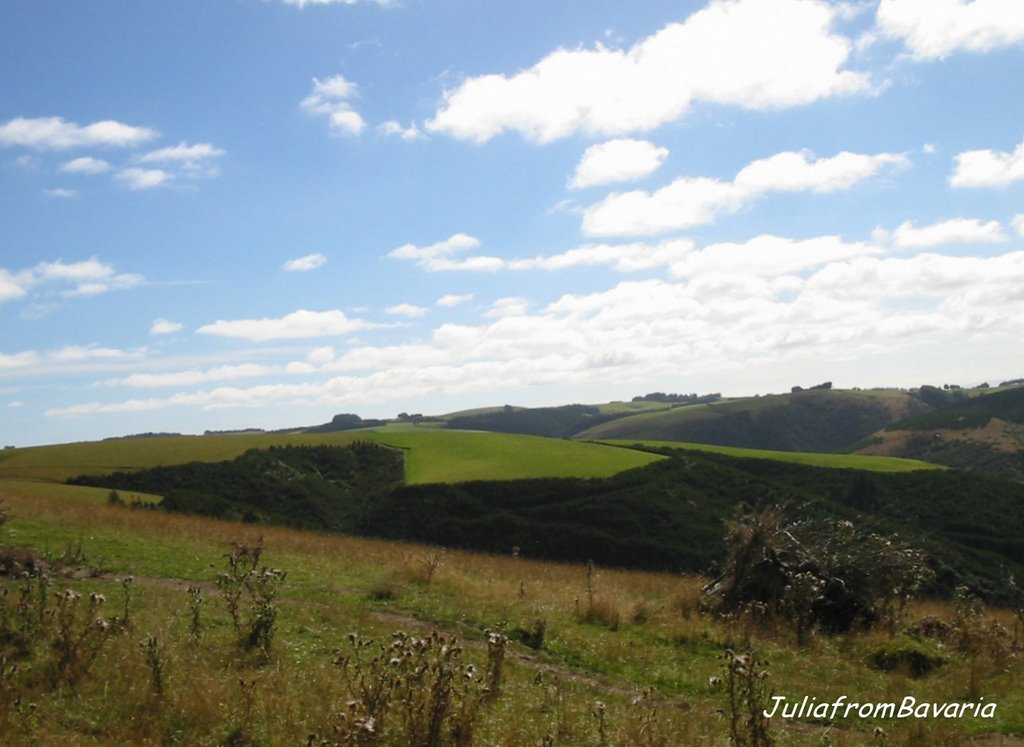 hills north of Balclutha, N.Z.