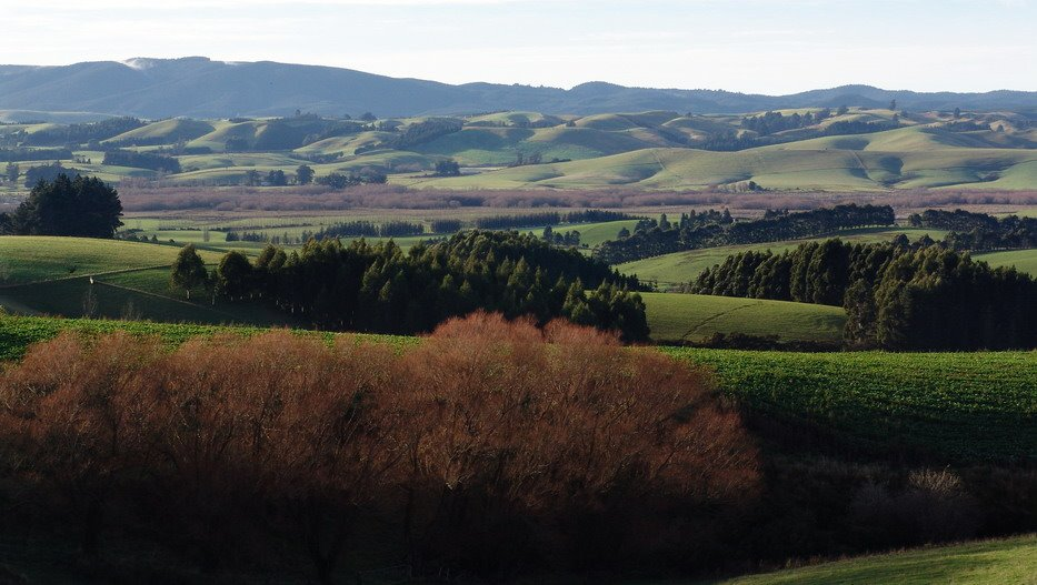 Countryside near Balclutha